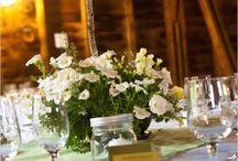 Wedding / by Shayna Colbert
