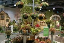 Philly Flower Show 2013 / by Hort Couture