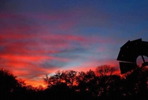Sunsets Texas / by Brooke Banx