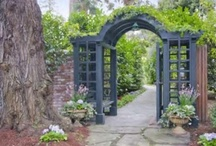 Outdoor Spaces / A collection of Ideas for Garden and Growing things / by Beth Harris