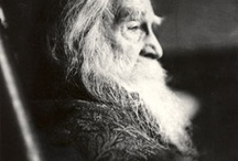 Walt Whitman / by Betsy Tsukada