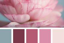 Colours / by Joann Amatyakul