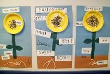 School Ideas / by Lora Glover
