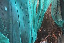 Turquoise , Teal , Aqua, & Green / by Danielle Nakagawa