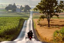 Unforgettable Sights / Ohio's Amish Country is truly a picturesque place! Travel along the backroads and byways, and witness the spectacle for yourself. / by Ohio's Amish Country