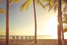 SUMMER!!! / by Queensland