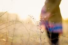 Photography / by Kate Kogen