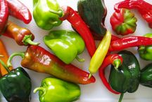 Pepper recipes / by Seacoast Eat Local