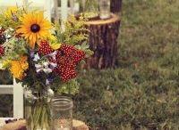 Wedding Ideas / by Karen Risley