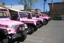 Jeeps / It's a Jeep thing! / by Jody Rose