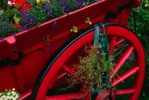 WHEELBARROWS I love! / by Lynn Smith Barbadora(Painting Thyme Needfuls)