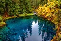 Hiking Adventures / by Jennifer Cooper