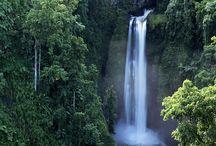 Polynesian Pride  / by Emerald