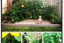 Gardening / by Jeannine DeVetter