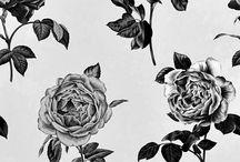 Pretty Prints + Patterns / by Lisa Katherine