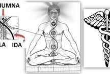 Spirituality, Energy / by yanna boo