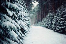 Snow / by Lauren Creason