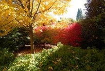 Campus Landscape / by Oregon State University Facilities Services