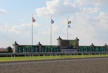 KY Horse Racing / by LEX 18 News
