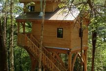 Tiny House Dreams / by Erin Phelps