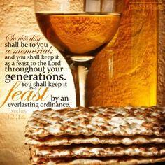 Exodus 12:14 ~ Passover