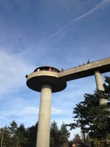 Clingmans Dome got its name as a result of an argument! http://www.cabinfevervacations.com/blog/6-shocking-facts-history-clingmans-dome/
