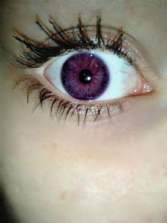 """Contact lens or the possible hoax called """"Alexandria's Genesis""""? eye"""