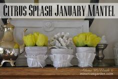 Minerva's Garden:  Citrus Splash January Mantel