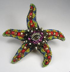 Starfish Eye by Betsy Youngquist