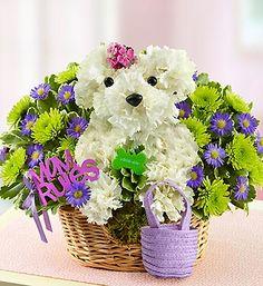 Λουλούδια για τη Μαρία!