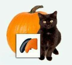 Forum on this topic: 4 Alternatives to Declawing, 4-alternatives-to-declawing/