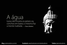 """""""A água turva não mostra os peixes ou conchas em baixo; o mesmo faz a mente nublada."""" — Textos Budistas - Veja mais sobre Espiritualidade & Autoconhecimento no blog: http://sobrebudismo.com.br/"""