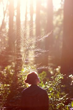 Finale #Light / #Forest / #Girl / Maybe #dawn // #Luz / #Bosque / #Chica / Tal vez #amanecer //