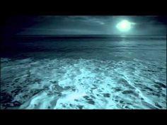 Footprints [U.S. Navy SEALs commercial]