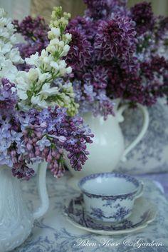Lilacs and tea.