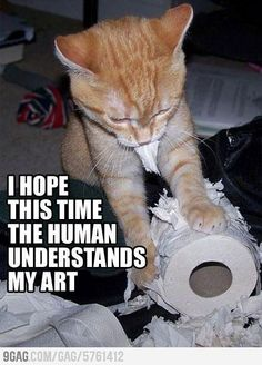 I hope this time the human understands my art.