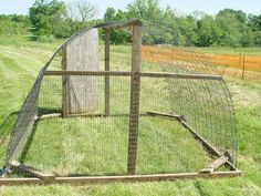 another cattle panel chicken tractor