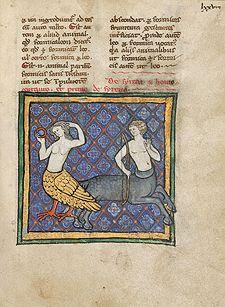 A Siren and Centaur