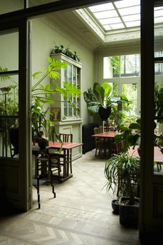 Greenhouse-like dining room at B in Antwerp