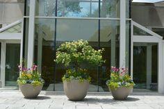 Large planters greet visitors to The Morton Arboretum's Administration Building.