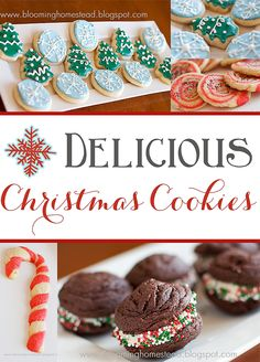 These delicious Christmas Cookies make the perfect festive gift! #christmas #cookies
