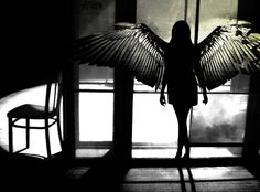 model, angel wings, art, white, silhouettes, beauti, dark angels, black, photographi
