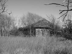 Farmers abandoned h