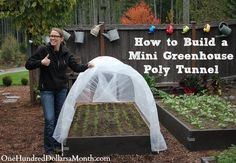 Yesterday after school, Monkey Boy helped me put together a small polytunnel {or mini greenhouse} to cover one of our raised garden beds. According to the Farmer's Almanac, it's going to be a cold winter up here in the Pacific Northwest and since I'm...