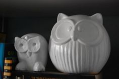 White owls: My DIY project