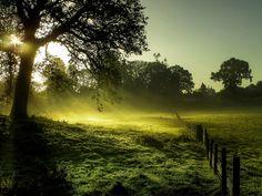 Gloucestershire UK (by Eric Goncalves)