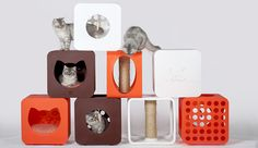 New Kitty Kasa Collection from Arni Says, All Profits Go to Help Rescue Animals!