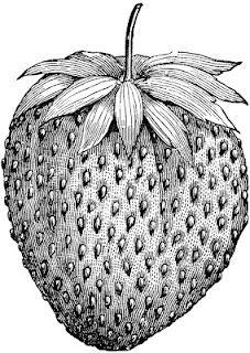 **FREE ViNTaGE DiGiTaL STaMPS**: Free Vintage Digital Stamp - Sweet Strawberry