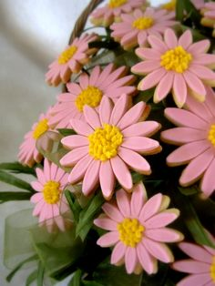 pink daisy cookies