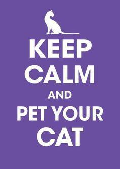 Keep Calm: cat